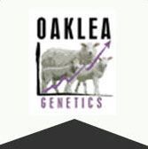 Oaklea Genetics